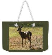 Lovely Deer Weekender Tote Bag