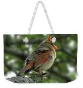 Lovely Female Cardinal Weekender Tote Bag