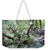Lovely Lithia Springs Weekender Tote Bag