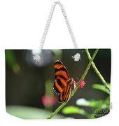 Lovely Orange Oak Tiger In The Spring Weekender Tote Bag