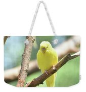 Lovely Yellow Budgie Parakeet In The Wild Weekender Tote Bag