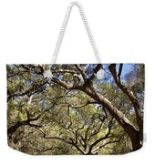 Low Angle View Of Trees In A Park Weekender Tote Bag