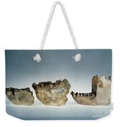 Lower Jawbones Weekender Tote Bag