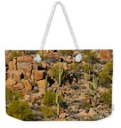Lush Arizona Desert Landscape Weekender Tote Bag