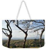 Lush Land Leafless Trees Iv Weekender Tote Bag