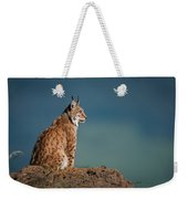 Lynx In Profile On Rock Looking Up Weekender Tote Bag