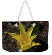 Mackinac Island Flowers 10663 Weekender Tote Bag