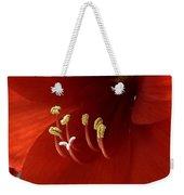 Macro Of Red Amaryllis Flower Weekender Tote Bag