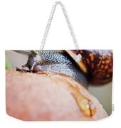 Macro World Weekender Tote Bag