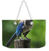 Mad Bird Weekender Tote Bag