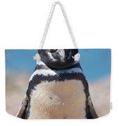 Magellanic Penguin In Argentina Weekender Tote Bag