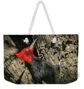 Magellanic Woodpecker - Patagonia Weekender Tote Bag