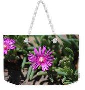 Magenta Purple Desert Moss Rose Weekender Tote Bag