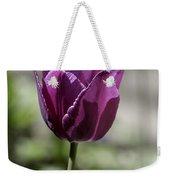 Magenta Tulip Squared Weekender Tote Bag