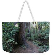 Magical Path Through The Redwoods On Mount Tamalpais Weekender Tote Bag