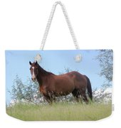 Magnificent Horse Weekender Tote Bag