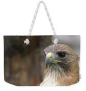 Magnificent Red-tailed Hawk  Weekender Tote Bag