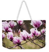 Magnolia Blooming In An Early Spring Weekender Tote Bag