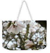 Magnolia Tree Flowers Pink White Magnolia Flowers Spring Artwork Weekender Tote Bag