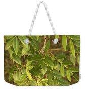Mahogany Leaves On A Branch Weekender Tote Bag