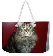 Maine Coon Portrait Weekender Tote Bag