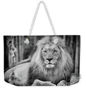 Majestic Male Lion Black And White Photo Weekender Tote Bag