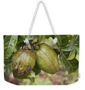 Malabar Chestnuts Weekender Tote Bag
