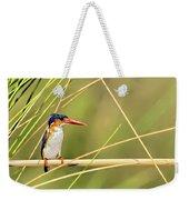 Malachite Kingfisher On Watch Weekender Tote Bag