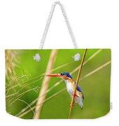 Malachite Kingfisher On The Hunt Weekender Tote Bag