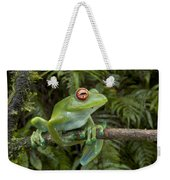 Malagasy Web-footed Frog Boophis Luteus Weekender Tote Bag