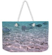 Maldives School Of Tropical Fish Weekender Tote Bag
