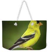 Male American Golden Finch On Twig Weekender Tote Bag