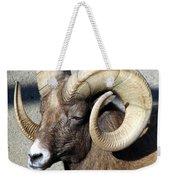Male Bighorn Sheep Ram Weekender Tote Bag