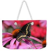 Male Black Swallowtail Butterfly On Echinacea Plant Weekender Tote Bag