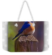 Male Bluebird Weekender Tote Bag