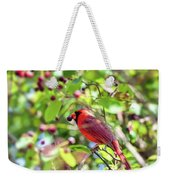 Male Cardinal And His Berry Weekender Tote Bag by Kerri Farley