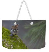 Male Common Chaffinch  Weekender Tote Bag