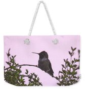 Male Costa's Hummingbird With Mauve Weekender Tote Bag