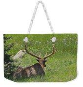 D10270-male Elk  Weekender Tote Bag