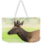 Male Elk Weekender Tote Bag