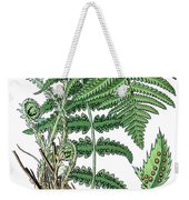 male fern, Dryopteris filix-mas Weekender Tote Bag
