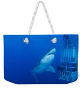 Male Great White With Cage, Guadalupe Weekender Tote Bag