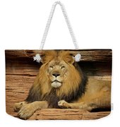Male Lion Looking Right At Me Weekender Tote Bag