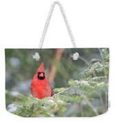 Male Northern Cardinal 2 Weekender Tote Bag