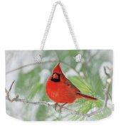Male Northern Cardinal In Winter - 2 Weekender Tote Bag