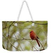 Male Northern Cardinal Weekender Tote Bag