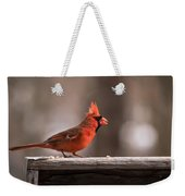 Male Northern Cardinal Winter New Jersey  Weekender Tote Bag