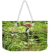 Male Pileated Woodpecker On The Ground No. 2 Weekender Tote Bag