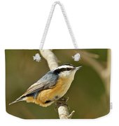 Male Red Breasted Nuthatch 2151 Weekender Tote Bag