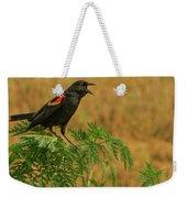 Male Red-winged Blackbird Singing Weekender Tote Bag